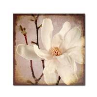 LightBoxJournal 'Paper Magnolia Closeup' Canvas Art