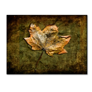 LightBoxJournal 'Metallic Leaf 1' Canvas Art