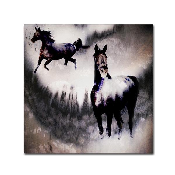 LightBoxJournal 'Black Mare - Dream 2' Canvas Art