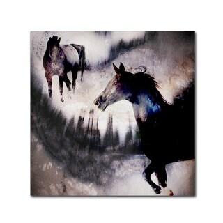 LightBoxJournal 'Black Mare - Dream 1' Canvas Art