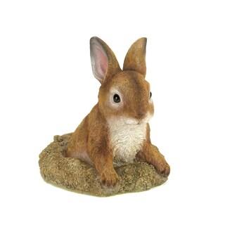 Koehler home decor Curious Bunny Garden Decor