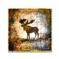 LightBoxJournal 'High Country Moose' Canvas Art