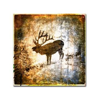 LightBoxJournal 'High Country Elk' Canvas Art