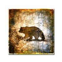 LightBoxJournal 'High Country Bear' Canvas Art