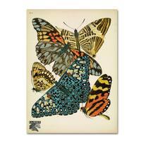 Vintage Apple Collection 'Papillons 3' Canvas Art