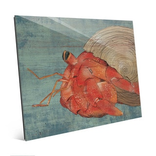 Big Hermit Crab on Blue Wall Art Print on Acrylic