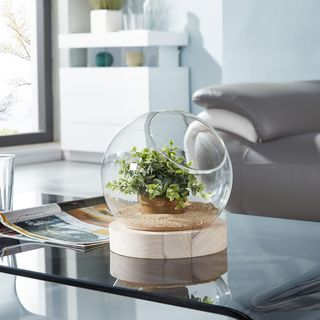 Danya B.  Glass Orb Terrarium/Vase on Wooden Stand