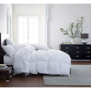 Feather and Down Year Round Comforter