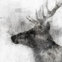 White Stag canvas art gel brush finish 24X24