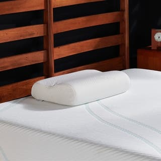 TEMPUR-Neck Gel Memory Foam Contour Pillow|https://ak1.ostkcdn.com/images/products/16304809/P22669562.jpg?impolicy=medium
