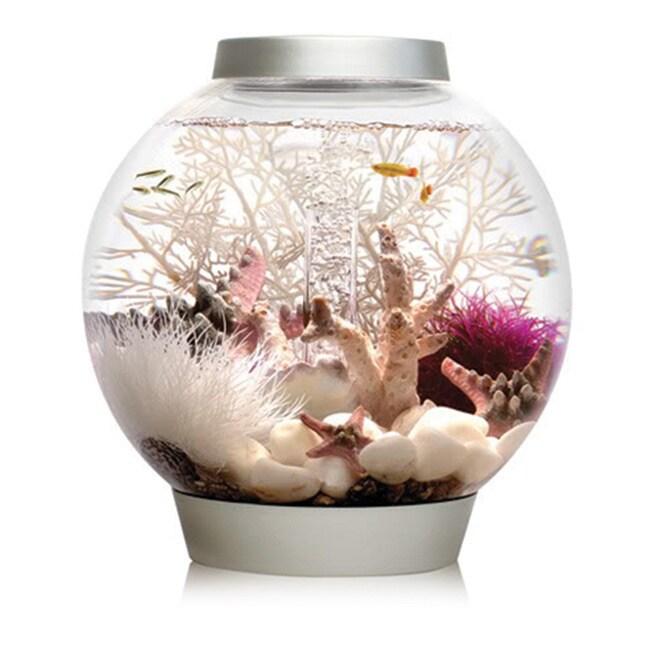 biOrb Classic 4 Gallon Acrylic Aquarium (Silver), Size Up...