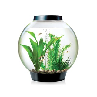 biOrb Classic 4 Gallon Aquarium Kit