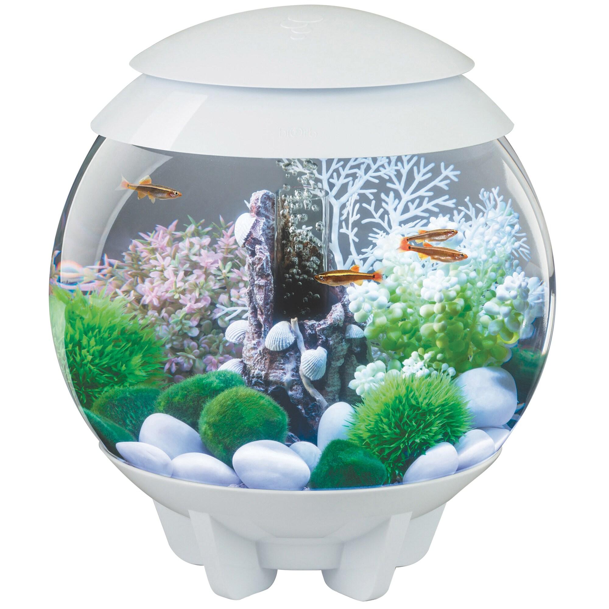 biOrb Halo 4 Gallon Acrylic White Aquarium (White), Size ...