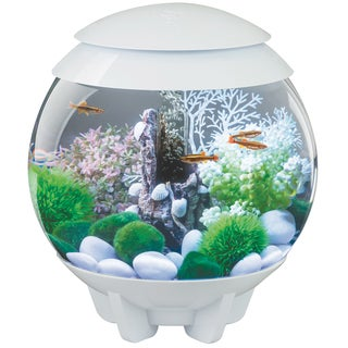 biOrb Halo 4 Gallon Acrylic White Aquarium