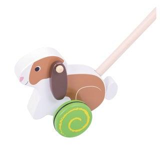 Bigjigs Toys Push Along Rabbit