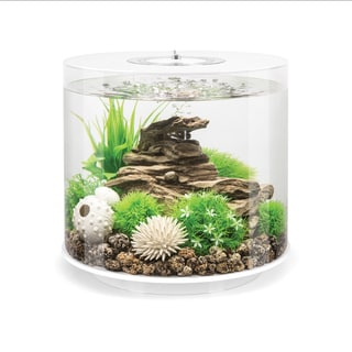 biOrb Tube 4 Gallon White Aquarium