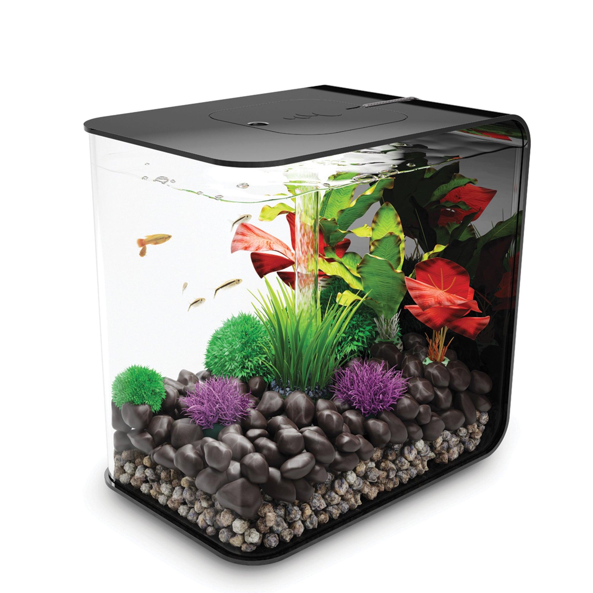 biOrb Flow 8 Gallon Black Aquarium (Flow 30 US Black), Si...