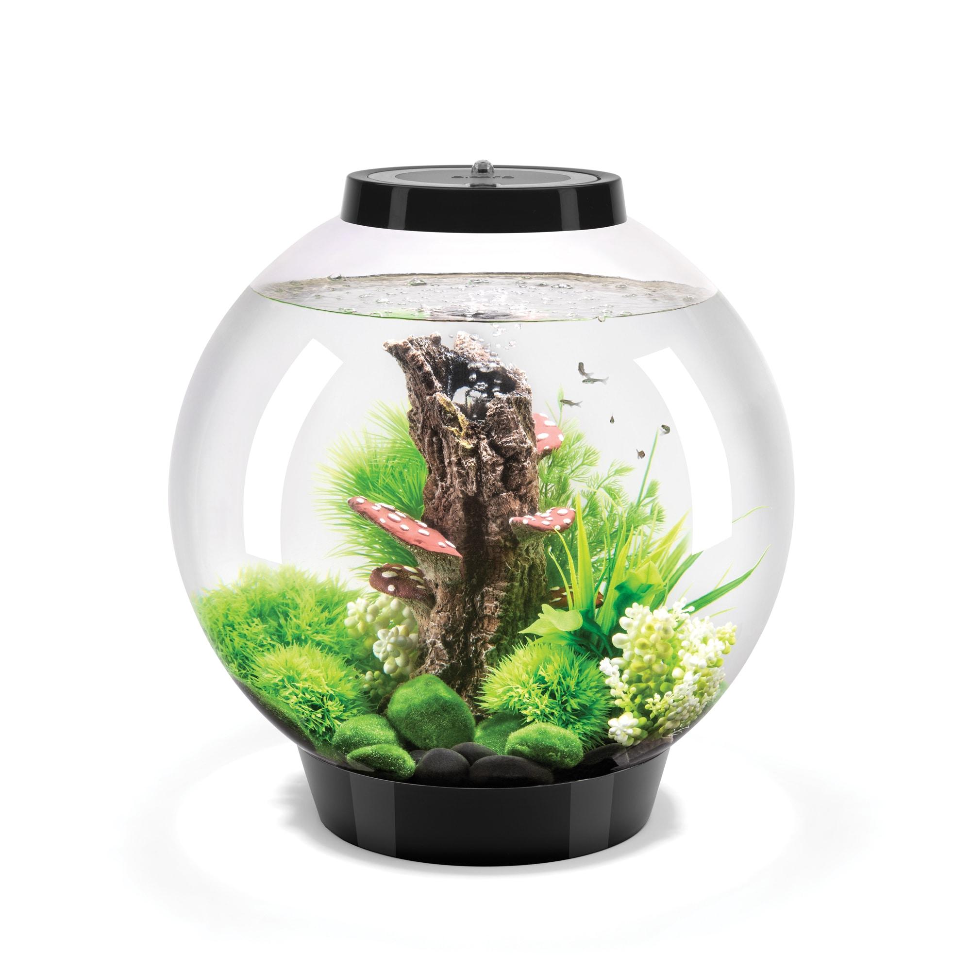 biOrb Classic 4 Gallon Acrylic Black Aquarium (Classic 30...