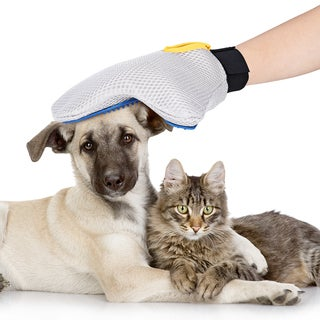 Pet Grooming Mitten Brush