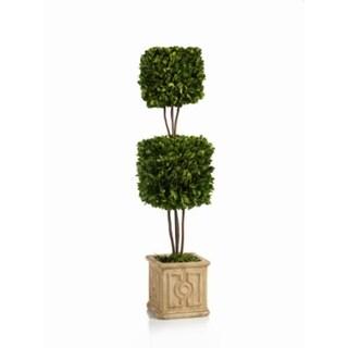 25.5-Inch Tall Cinzia Double Boxwood Topiary