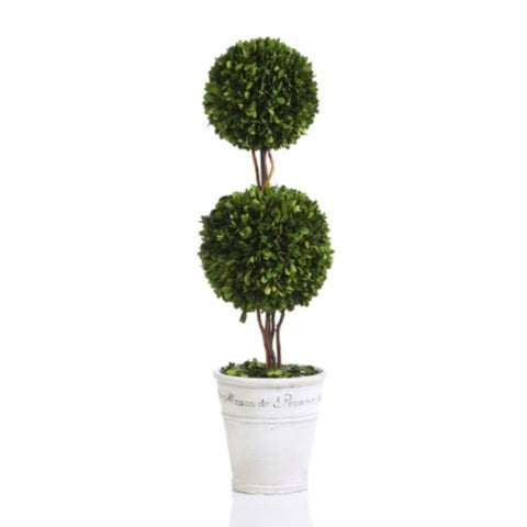 """30"""" Tall Preserved Boxwood Topiary, Double Ball Maison de Provence"""