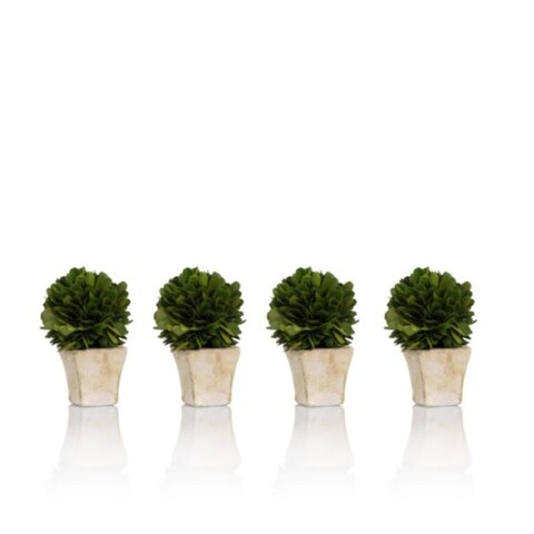 """4"""" Tall Preserved Boxwood Topiary, Single Ball (Set of 4)"""