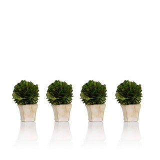 Zodax 4-Inch Tall Round Preserved Boxwood Topiary In Square Pot, Set of 4