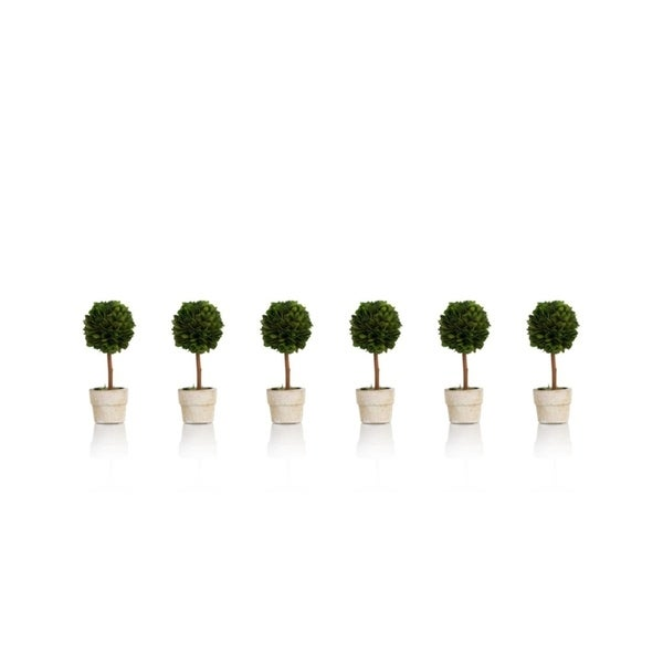 """6"""" Tall Preserved Boxwood Topiary, Ball Shaped (Set of 6). Opens flyout."""