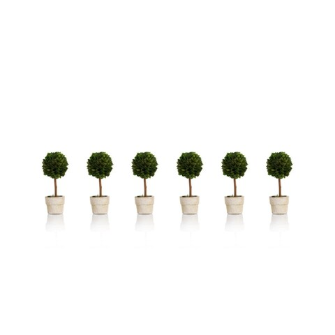 "6"" Tall Preserved Boxwood Topiary, Ball Shaped (Set of 6)"