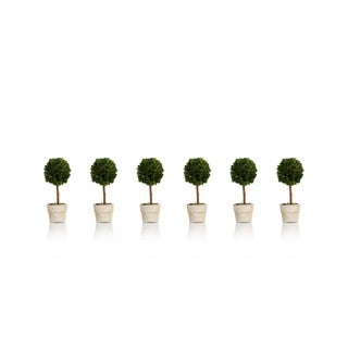 """6"""" Tall Preserved Boxwood Topiary, Ball Shaped (Set of 6)"""