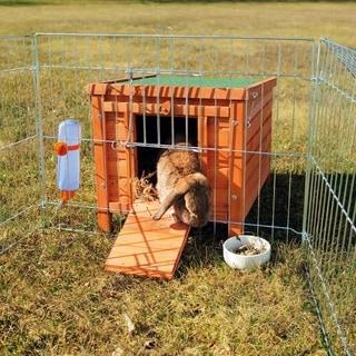 Natura Rabbit House
