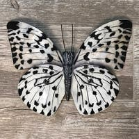 Black And White Butterfly Wall Decor