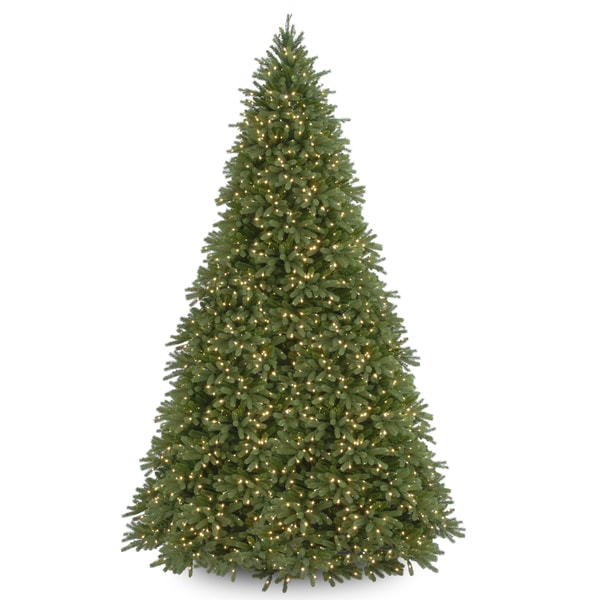 National Tree Company 12-foot Jersey Fraser Fir Tree with Clear Lights