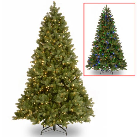 National Tree Company 6.5-foot Downswept Douglas Fir Tree with Dual Color LED Lights