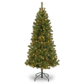 7 ft. Canadian Grande Fir Tree with Clear Lights