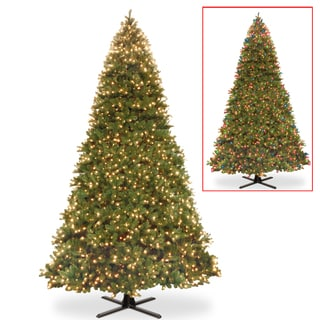 National Tree Company 15-fott Bayberry Spruce Memory-shape Tree with Dual Color LED Lights