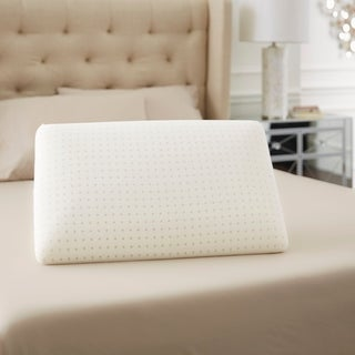 TruPedic Classic Memory Foam Pillow with Soft Touch Mesh Cover