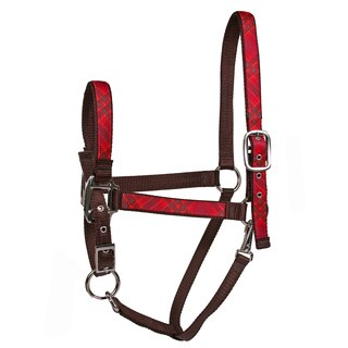 Red Haute Horse Red Kilt on Brown Nylon Horse Halter