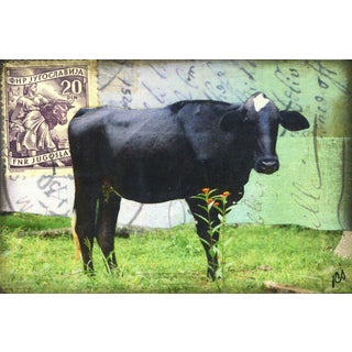 'Brahma Cow' Painting Print on Wrapped Canvas