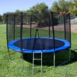 12' Round Trampoline Set With Safety Enclosure, Padding & Ladder
