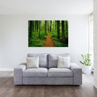 Noir Gallery Trail in a Lush Forest, Shenandoah National Park, Virginia Photo Print on Metal.