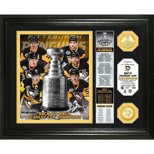 2017 Stanley Cup Champions Banner Bronze Coin Photo Mint
