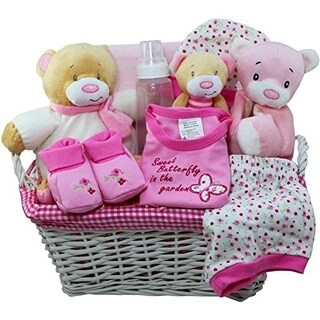 Art of Appreciation Sweet Baby Special Delivery Gift Basket
