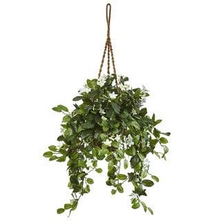 Nearly Natural Stephanotis in Hanging Basket