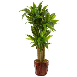 Nearly Natural Cornstalk Dracaena in Wooden Planter