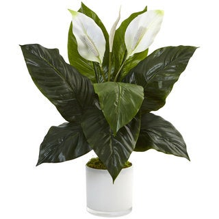 Nearly Natural Silk Artificial Spathifyllum in Glossy Glass Planter