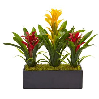 Nearly Natural Bromeliads in Rectangular Planter