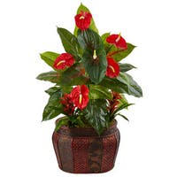 45-inch Mixed Anthurium and Bromeliad in Planter