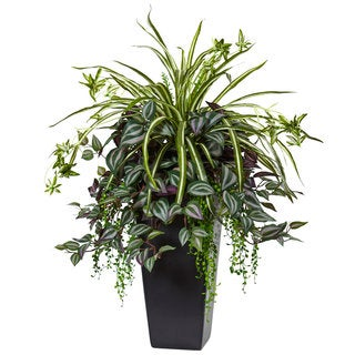 Nearly Natural Wandering Jew and Spider Plant in Black Planter
