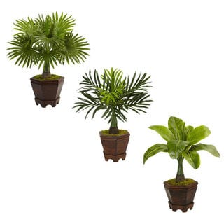 Nearly Natural Assorted Mini Palm Trees in Planter (Set of 3)